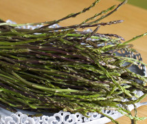 Search and collection asparagus – season
