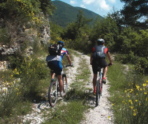 Trekking e Mountain Bike